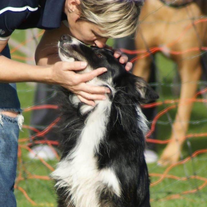 Dog training in Tucson AZ